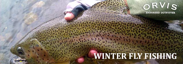 Winter Fly-Fishing Trips in the US